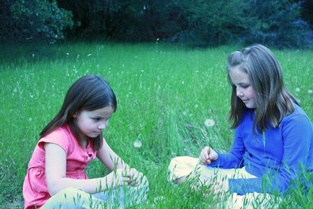 Two girls about to blow on dandelions Stock Photo - 7092248