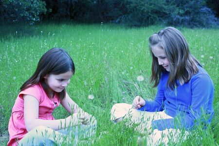 Two girls about to blow on dandelions Stock Photo - 7092249