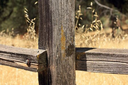 Old fence post photo