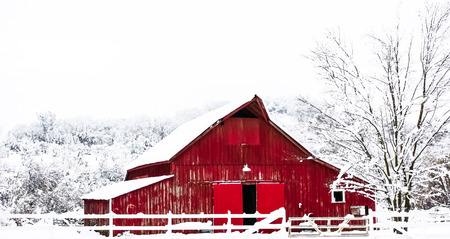 冬の雪の大きな赤い納屋 写真素材