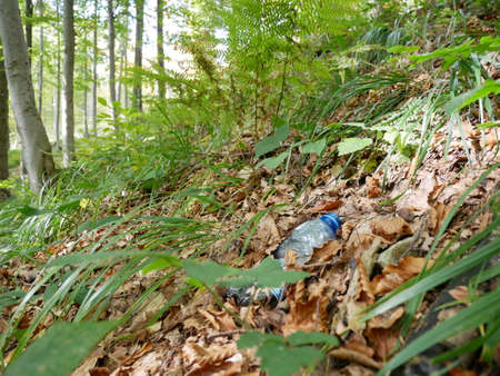 Ecological problems and pollution of nature by rubbish. A plastic bottle in the forest on the trail