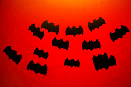 fruit bat: Halloween paper garlands on orange background Stock Photo