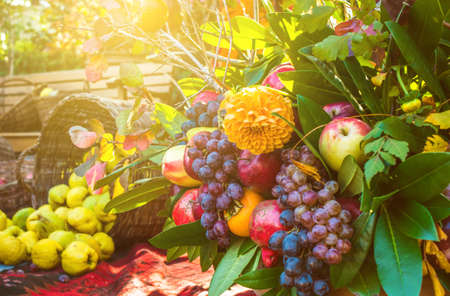 Autumn bouquet of flowers and fruits photo