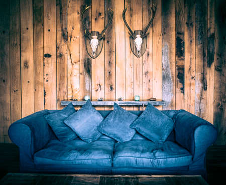 deer hunter: Blue sofa and two deer skulls on wooden wall toned in retro style