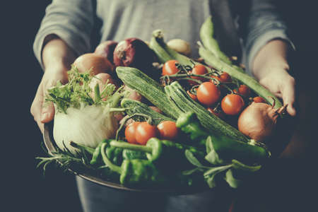 Hands holding big plate with different fresh farm vegetables. Autumn harvest and healthy organic food concept. Toned picture