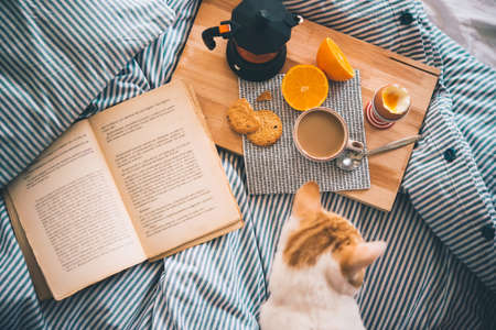 Breakfast served in bed - boiled egg, fresh orange, cookies and coffee, while reading a book and cuddling a cat. Selective focus. Toned picture Archivio Fotografico