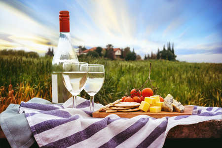 View of a picnic in the nature with bottle of white wine and appetizers. Picturesque farm seen in the background.