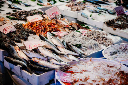 Different kinds of fish on sale at a fish market in Naples, Campania, Italy. 스톡 콘텐츠