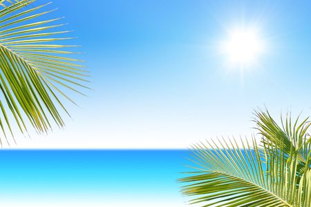 Tropical Sea with palm trees on sunny day