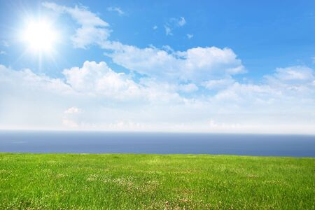 Fresh green grass on bright sunny day and sea in the background