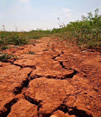 encogimiento: Tierra seca sobre el terreno en caliente sol de verano