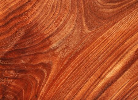 Fantastic Natural Wood Texture Background Stock Photo