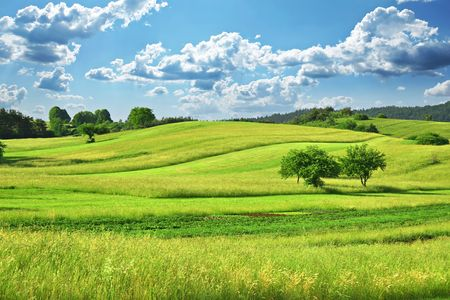 Green Grass Field  Landscape with fantastic clouds in the background Stock Photo
