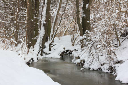 frozen river: Frozen river surrrounded with trees and bushes covered with ice Stock Photo