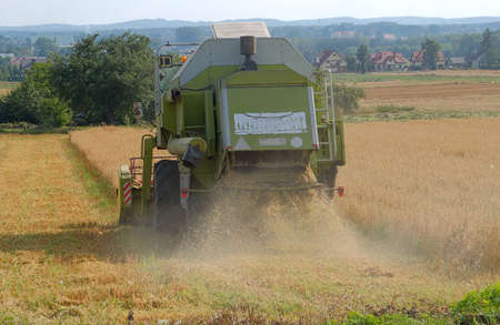 haymaking: Photo of hay falling from the back of combine harvester at haymaking