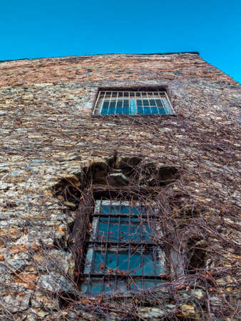 window panes: Distorted wall of an old stone building with two bar window panes and walls covered with vine against the background of blue sky