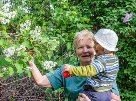 explores: Grandmother shows blooming flowers to her little grandson in a garden