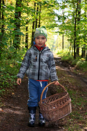 mushrooming: Little boy walks forest path with wicker basket in autumn on mushrooming excursion Stock Photo