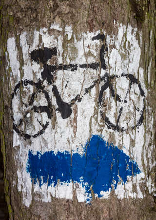 Blue arrow sign in white background and bicycle sign  painted on tree bark photo