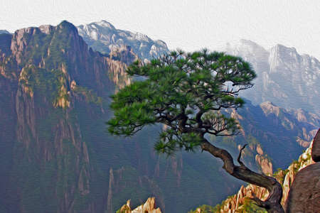 Photo of a single pine growing from the rock in the background of Huangshan  Yellow Mountains  in China, stylized and filtered to look like an oil painting  photo
