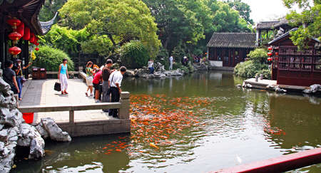 Tongli, China - July 21, 2007  Chinese tourists feeding koi carp in a traditional garden on July 21, 2007  Tongli is a beautiful water town in the vicinity of Shanghai