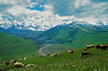 Alay valley, Kyrgystan photo