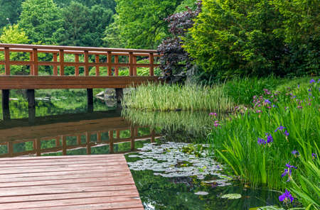 japanese garden pier red japanese bridge and beautiful water plants and trees photo