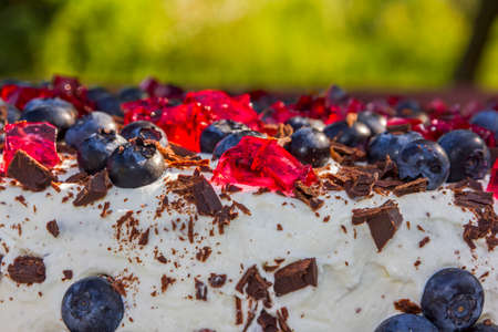 homemade cake: Close up photo of homemade cake topped with blueberries and pieces of red jelly with blurred background Stock Photo