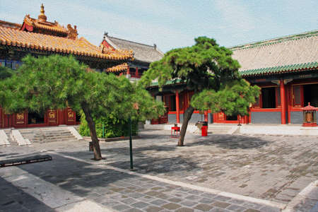 chinese courtyard: Courtyard of Lama temple in Beijing, China with beautiful artificially shaped pines, stylized and filtered to look like an oil painting. Stock Photo