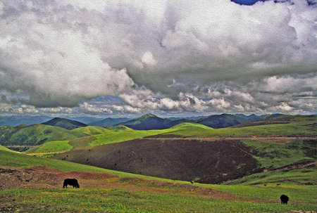 steppe: photo of two of yak grazing on grassland in eastern tibet, Kham, china, with grasslands, mountains and cloudy sky in background,  stylized and filtered to look like an oil painting Stock Photo