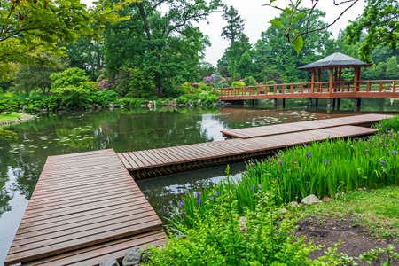 japanese bridge: wide angle view of japanese garden - pier, red japanese bridge and beautiful water plants and trees