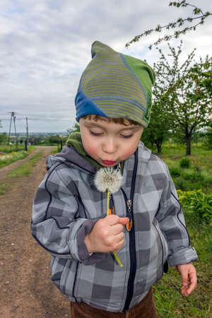 Little boy blows at the dandelion with rural landscape in background, vertical photo
