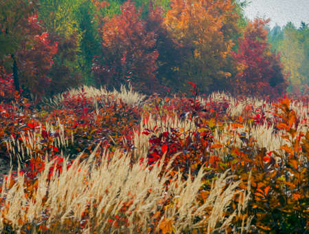 yeloow: Composition of colourful autumn vegetations,  stylized and filtered to resemble an oil painting. In the foreground meadow with yellow grass and red young oaks, in the background colourful foliage of various trees in the forest.