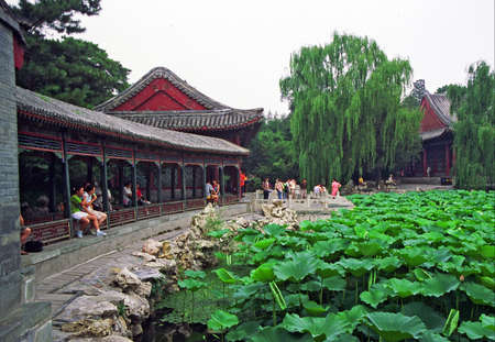 vintage style photo of chinese garden pavilions seen across the pond covered with nenufars and water plants in summer palace, Beijing, China