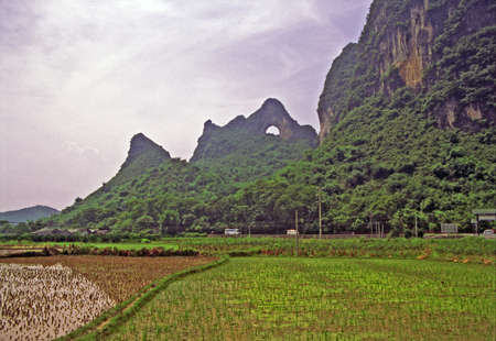 vintage style photo of chinese rural landscape near yangshuo with rice fields in foreground and moon hill in background