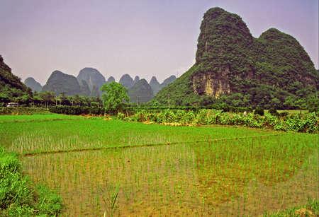 Yanhsguo - 田んぼとバック グラウンドで素晴らしい山近くの中国の農村風景のビンテージ スタイル写真