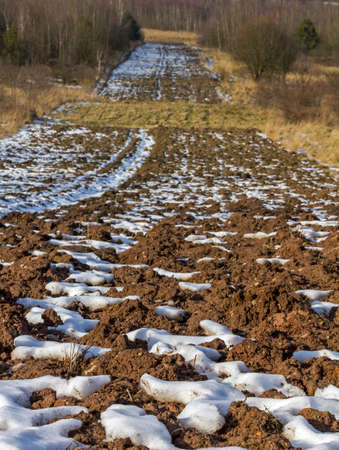 ground in the field in early spring - lumps of plowed earth and patches of melting snow, vertical Reklamní fotografie