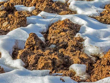 地球の固まりおよび溶ける雪のパッチ - 早春のフィールドで地面の写真を閉じる 写真素材