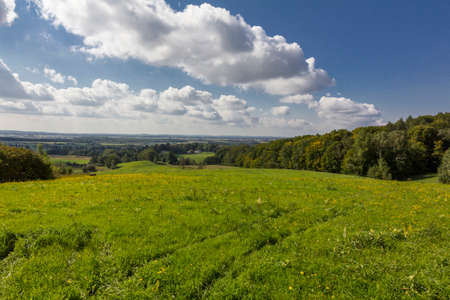 前景色、森林、背景と青空白い雲の上の村の緑の草原の美しい夏の田園風景