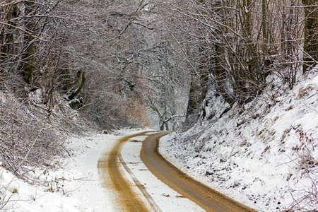 冬には、国の道路が雪と両側に厚い雪に覆われた木が付いている砂で覆われて