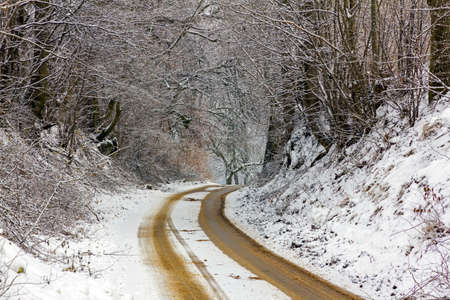 country road in winter, covered with snow and sand with thick snow covered trees on both sides