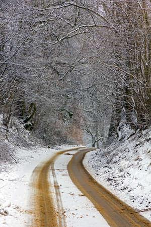 雪と、両側は垂直に厚い雪に覆われた木が付いている砂で覆われた冬の田舎道