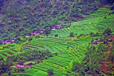 photo of aerial view of traditional village in china with old cottages and terraced fields, leaping tiger gorge, yunnan,  stylized and filtered to resemble an oil painting