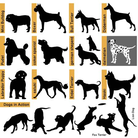 black silhouettes of dogs - different races Illustration