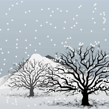 toter baum: Baum im Winter