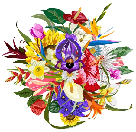 Bouquet of many beautiful and colorful flowers Vector