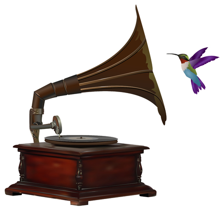Old gramophone and colorful hummingbird listening to music