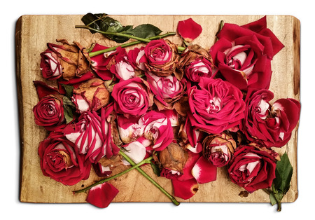 Pile of withered red roses is placed on a wooden board - an artistic decadence look Stock Photo