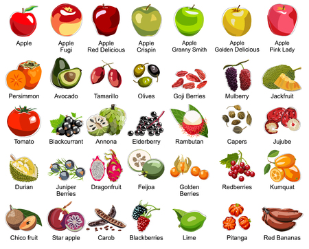Collection of 35 Fruits icons – Part 2 - All types of apples and some tasty exotic fruits Illustration