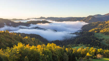 Aerial photo of thick fog covering the forest and the lake in early morning landscape.